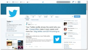 Twitter redesign sample